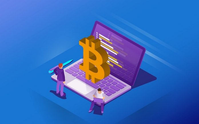 Secure Your Crypto Wallet